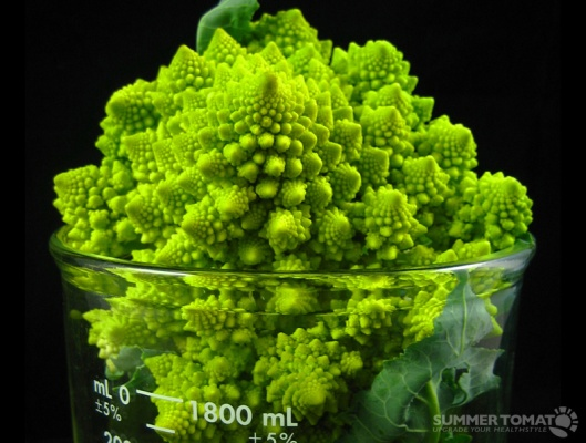 summertomato_broccoli
